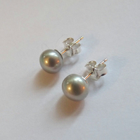 Grey Freshwater 7mm A grade Pearl Sterling Silver Stud Earrings