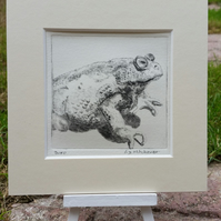Original signed drypoint of Bufo the toad