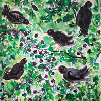 Blackberry Blackbirds