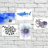 Marine-Life Art Postcards (5 Pack)