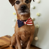 USA Dog Bow Tie