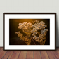 Golden Glow - Photography print - 10x8 - Nature - Landscape - Floral