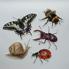 Insect vinyl stickers . Insect lover gift . Love bugs stickers