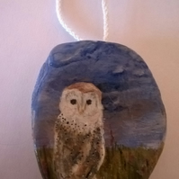 barn owl paintted shell