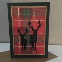 Pack of 5 tartan stag Christmas cards
