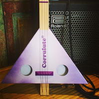 Make Your Own Electric Stringed Instrument Kit