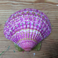 Hand Decorated Scallop Shell