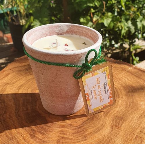summer candle - soy candle in a clay pot - aromatherapy candle - Limited Edition