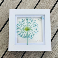 Fused glass small dandelion bicture