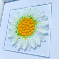 Fused glass daisy