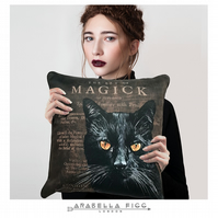 Magical Black Cat Witchcraft Familiar Nature Spirit Cushion & Free Cushion Pad