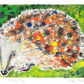 fuzzy pig - charity print, hedgehog, original hand painted linoprint