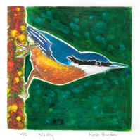 nutty - charity, original painted linoprint of a nuthatch