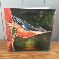 Nutty - charity greeting card of a Nuthatch