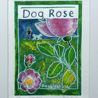 Dog Rose - charity original hand painted lion print 001