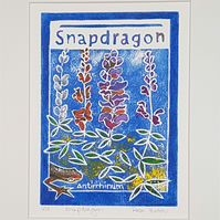 Snapdragon - original hand painted lino print 002