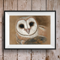 Barn Owl Print - Barn Owl Picture - Owl Painting - Owl Picture - Owl Print