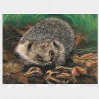Hedgehog, hedgehog picture, original art print, hedgehog print
