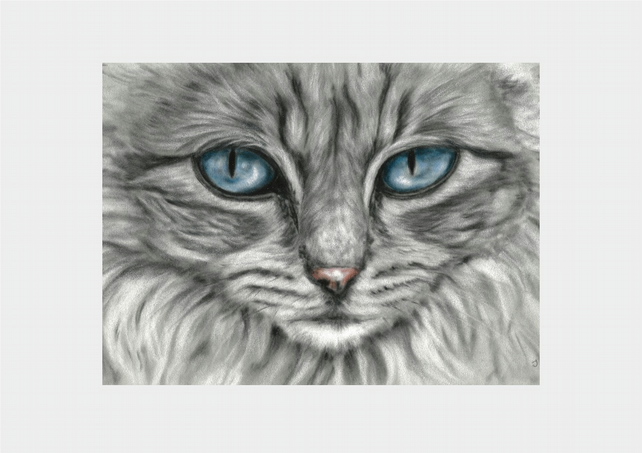 Grey Cat Print, cat wall art taken from original painting by Tracey Earl