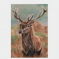 Stag print, animal art, original art print, stag painting by Tracey Earl