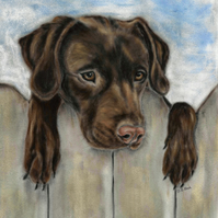 Chocolate Labrador Retriever dog picture print of original dog painting size A4