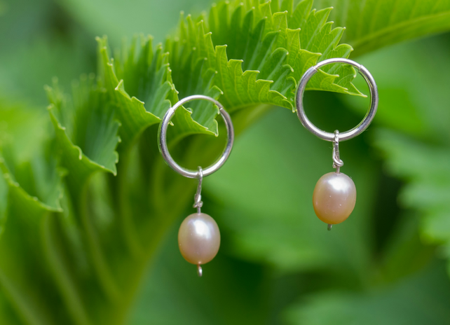Sterling Silver hoops with rose pink freshwater pearl drops