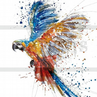 Colourful Parrot Print poster A3
