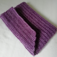 Purple Shimmer Clutch Purse.