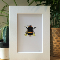 Bumblebee Limited Edition Art Print