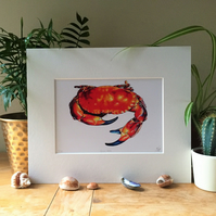 Devon Crab Limited Edition Art Print