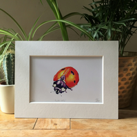 Ladybird Limited Edition Signed Art Print