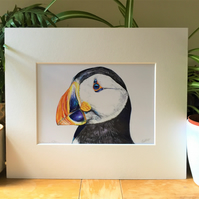 Puffin Fine Art Giclee Print, Signed
