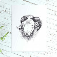 Ram pen and ink print