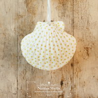 Hanging Mini Stars Decoration on Giant Scallop Shell by Netties Shells