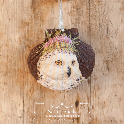 Hanging Thistle Head Owl Decoration on Giant Scallop Shell by Netties Shells
