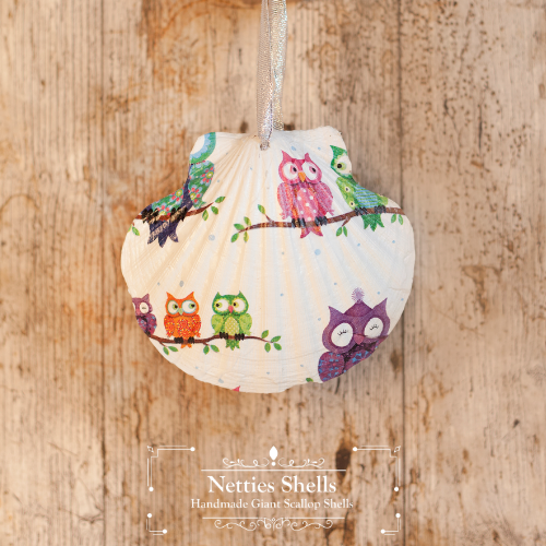 Hanging Cartoon Owls Decoration on Giant Scallop Shell by Netties Shells
