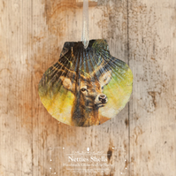 Hanging Deer Decoration on a Giant Scallop Shell by Netties Shells