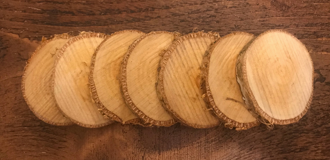 15 Rustic Natural Birch Wood Slices