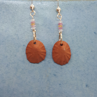 Terracotta shells and gold filled earrings