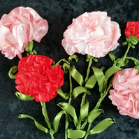 The gorgeous carnations