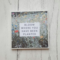 Handmade Ceramic Coaster - Bloom Where You Are Planted