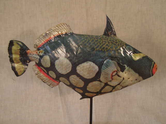 Life Like Interior Decor Sculpture of Tropical Marine Trigger Fish