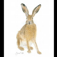 BROWN HARE  'STANDING' - Wildlife Greetings Card - Blank Inside