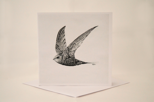 Pack of 2 Art Cards Featuring Bird Illustrations by CharlieAnneArt