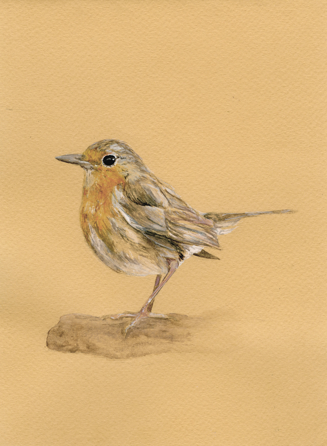 'Robin' Mounted Giclee Print on Matte Paper by Charlieanneart