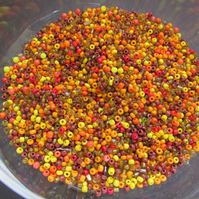 60 grams Autumnal Colour Mix Seed beads