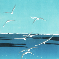 Card - Seagulls from my original reduction Lino Print