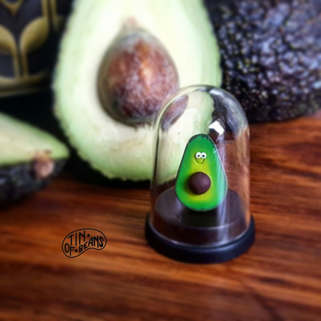 Pet Avocado Vegan Gift Birthday