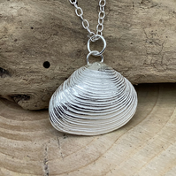 Pure silver shell
