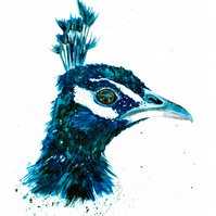 Original, Watercolour Painting, Peacock